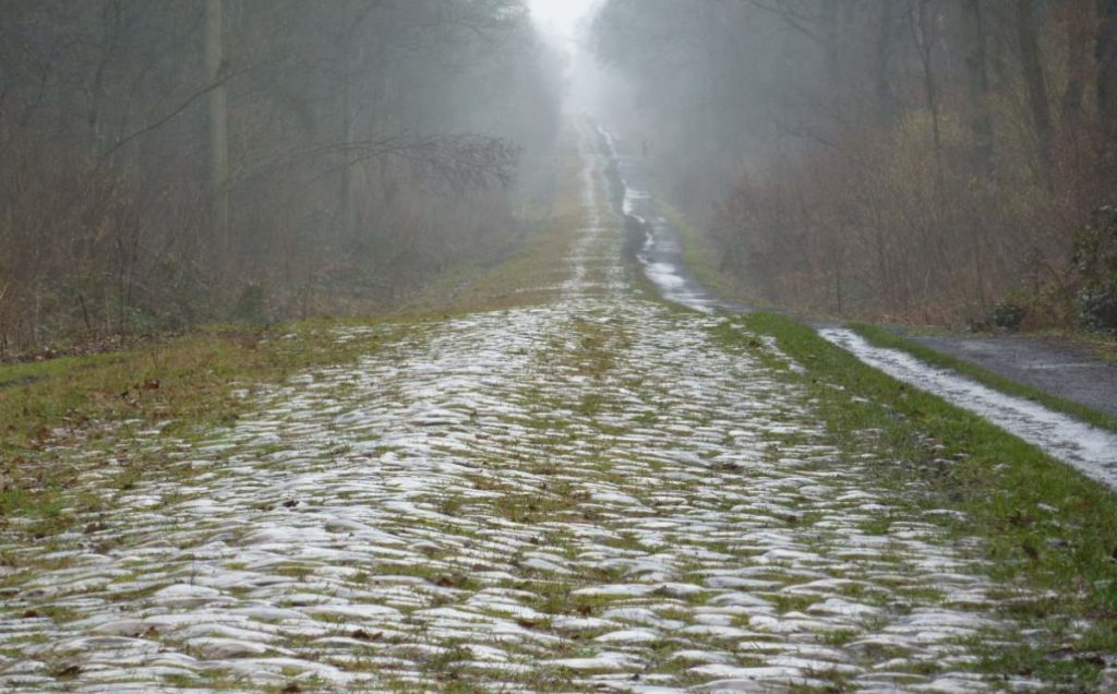 Paris-Roubaix 2015 Route and Cobbled sectors - Arenberg Forest