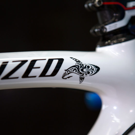 "Specialized S-Works Tarmac 2014 Nibali Edition Frameset details: ""The Shark"" on the top tube"