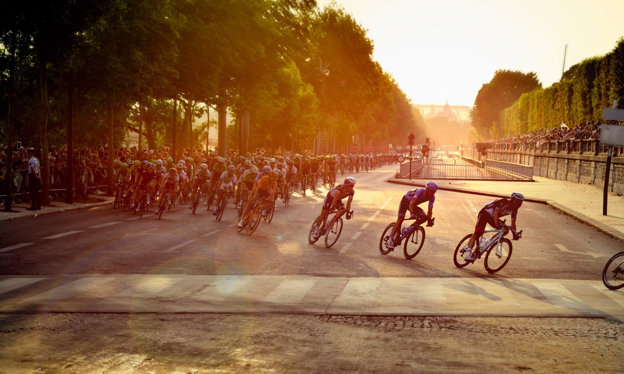 Cycling Passion