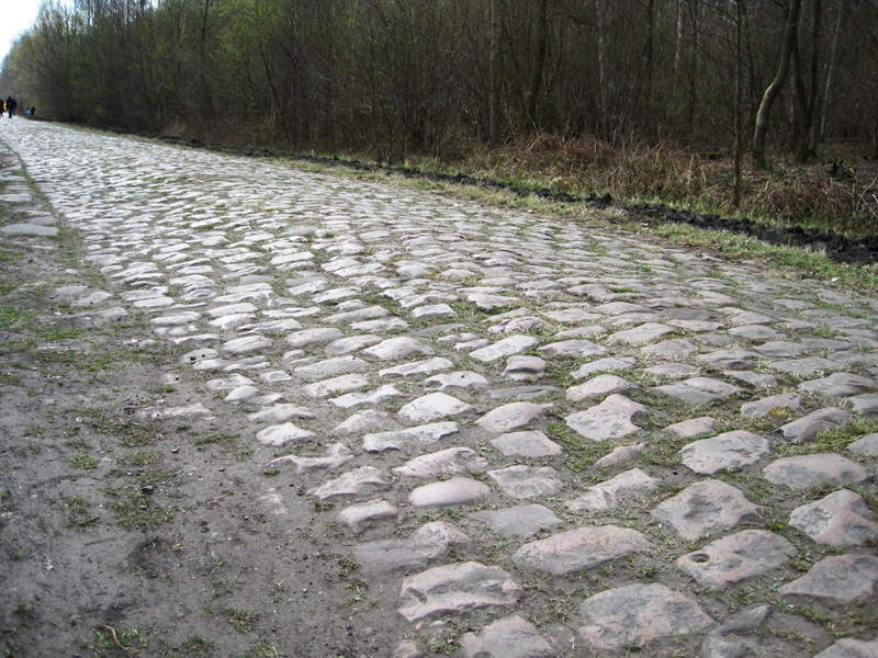 Paris Roubaix, Arenberg Forest