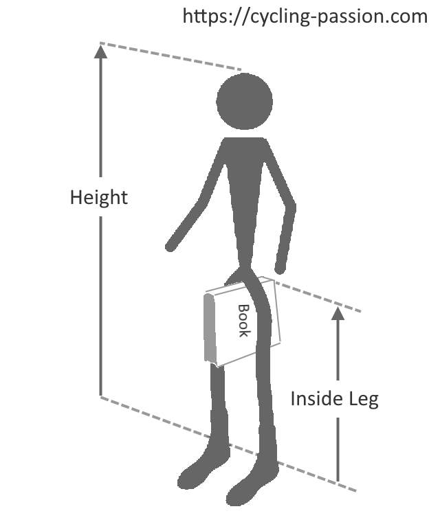 Measuring the height of the inside leg and the overall height of a cyclist.